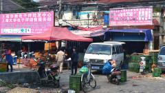 СЗО призова за забрана продажбата на диви животни на пазарите за храна