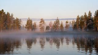 13 станаха децата, загинали в езерото в Карелия