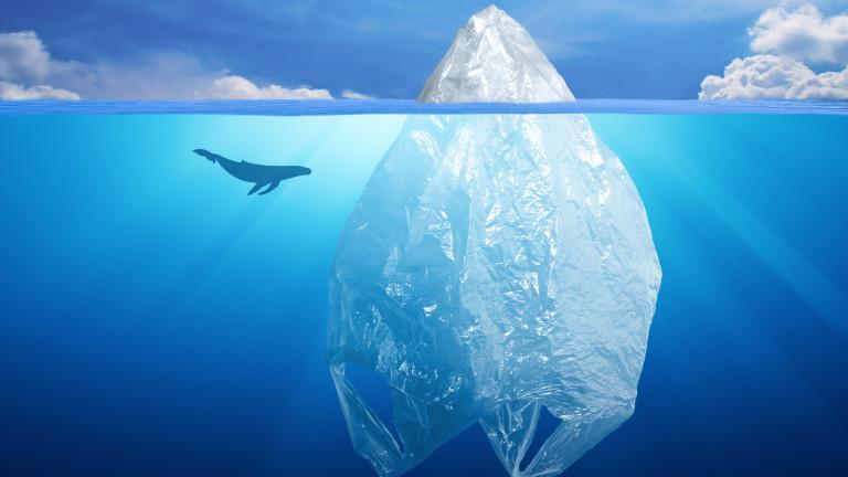 Учените установиха, че замърсяването с микропластмаса не е проблем само