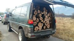 Извозват дървесина във Велинградско въпреки забраната заради АЧС