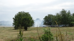 Огън по непредпазливост изгори 100 дка треви