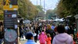 Близо 75% от българите не се интересуват от политиката у нас