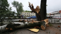 Трима загинали в Полша заради порои и ураганни ветрове