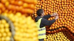 Тази съседка на България спечели $933 милиона от износ на цитруси през 2020-а