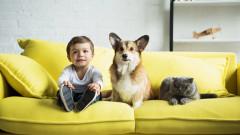 12 страхотни причини детето да израсне с куче