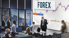 Поеми финансовото си бъдеще в ръце - с безплатно Forex обучение