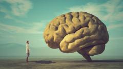 Каква е връзката между забравянето и интелигентността