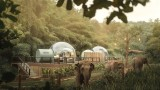 Тайланд, Anantara Golden Triangle Elephant Camp & Resort и нощувките в стъклени балони сред слонове
