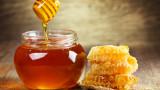 60% по-малко мед сме произвели през 2018 г.