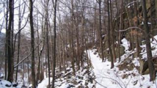 Две смолянски села са затрупани от снега