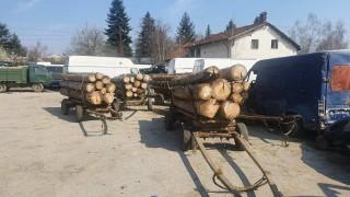 Самоков, Разлог и Струмяни са с на-много незаконна сеч в извънредно положение