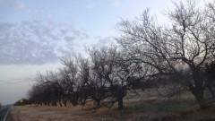 Заводът, предизвикал екокатастрофата в Крим, продължава да работи