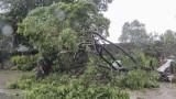 """Най-малко 13 жертви на тайфуна """"Мангхут"""" във Филипините"""