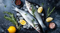Как да използваме всяка част от рибата