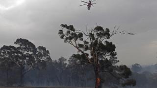 Армията евакуира бедстващите хора при пожарите в Австралия
