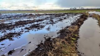 """Бургаско село е в ситуация """"вода гази, жаден ходи"""""""