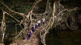 Най-необикновените маршрути до училище (СНИМКИ)