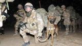 2000 натовци жертва на талибаните в Афганистан