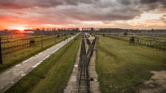 """Полски министър подкрепи откриване на """"Полокост"""" музей"""