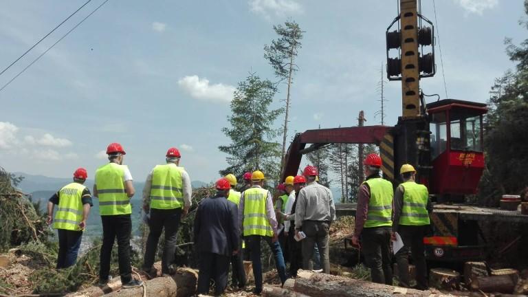 С 5 щатни места увеличават горските инспектори у нас