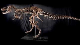 Динозаврите се появили много по-рано от считаното досега