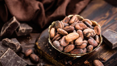 Защо шоколадът побелява