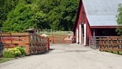 Само в краен случай удължават срока за модернизиране на фермите