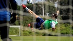 Златан Ибрахимович: Швеция ще отстрани Англия, може да спечели и цялото първенство