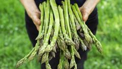 Храната може да повлияе на разпространението на рака