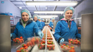 Европейската държава, в която повече от половината работници са чужденци