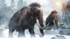 Откриха най-старото ДНК от мамут