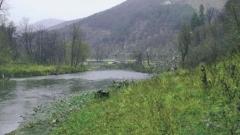 Дъждът отровил рибата в Пазарджишко