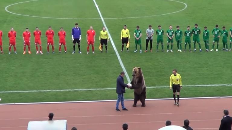Мечка даде началото на мач в Русия! (ВИДЕО)
