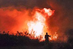 Във Видинско предприемат мерки срещу пожари и палежи
