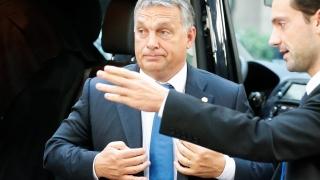 Орбан настоя ЕС да изгради ограда в Северна Гърция за тотално спиране на потока мигранти