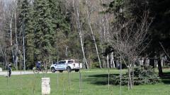 Акт от алеята в парка при извънредно положение – какви са правата ми?