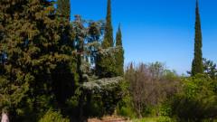 Съдът върна на СУ спорните декари от Ботаническата градина във Варна