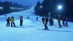 Мечки стреснаха скиори в Румъния