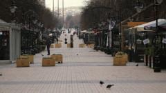Паднали клони и откъртени огради заради силния вятър в София