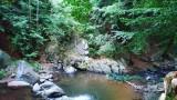 Изображение 442478
