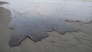 """Компания на """"Роснефт"""" причини петролен разлив край о. Сахалин"""