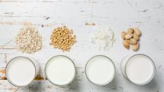 Растителните млека и кое да изберем
