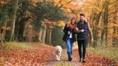 Минусът на разходките с любимия човек