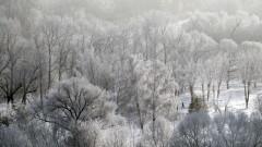 Дъжд и сняг, в 22 области има предупреждение за обилни валежи