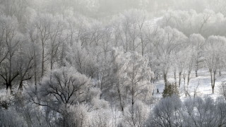 Жълт код за студ и сняг в Южна България