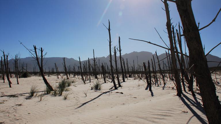 Светът е разделен за спешността на справянето с климатичната криза
