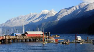 Петима туристи, паднали от 500 м, открити мъртви в Канада