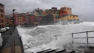 Силен снеговалеж създаде хаос в Западна Европа
