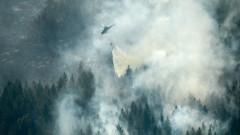 В Швеция евакуират цели села заради пожари