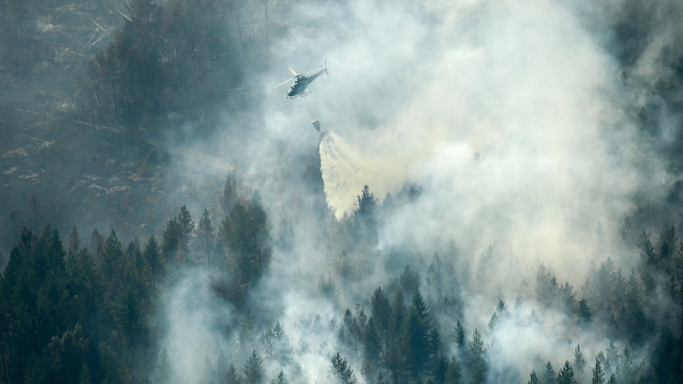 Пожари унищожават горите в Швеция и рискът от разпространяването им